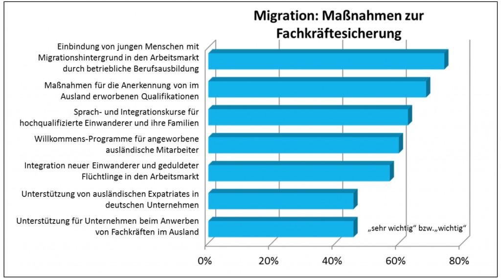 Migration- Maßnahmen zur Fachkräftesicherung